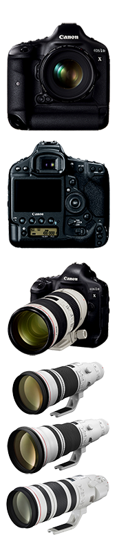 Canon Cameras.png